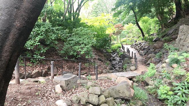 芝公園4号地から東京タワー